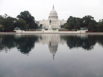 Rear of U.S. Congress on the Capitol reflecting pool