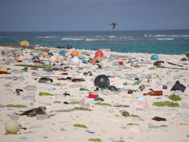 A beach is covered with marine debris. (Photo credit: (Susan White/U.S. Fish and Wildlife Service/Wikimedia Commons)